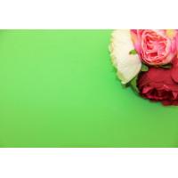 Фоамиран Китай лист 50х50см, зеленый