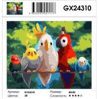Картина по номерам Raduga (Paintboy) 40x50 - GX24310